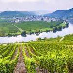 wine river france