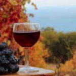 autumn red tasting